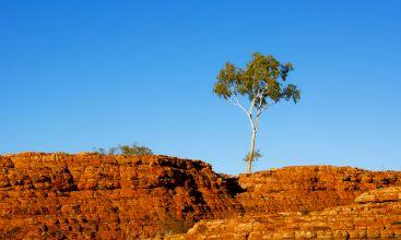 Alquiler de coches Alice Springs